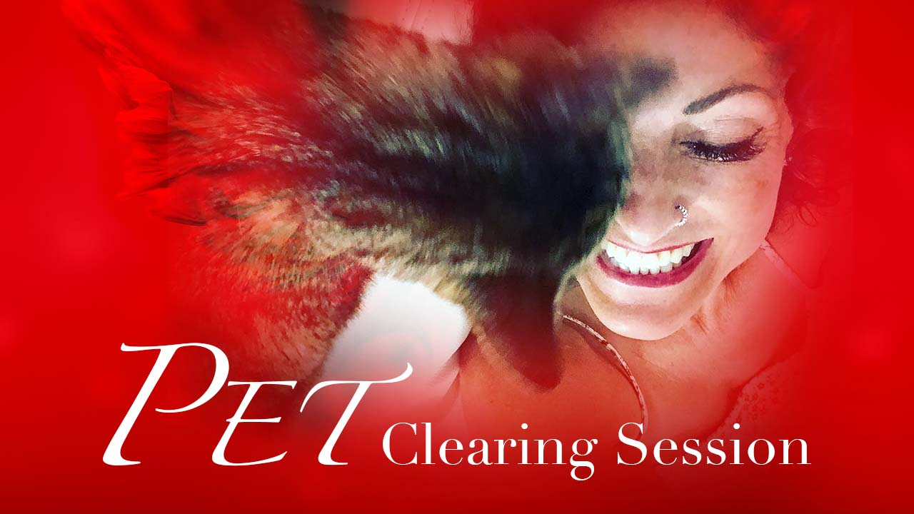 https://rudranidevi.com/wp-content/uploads/2021/04/Pet-Clearing-Session.jpg